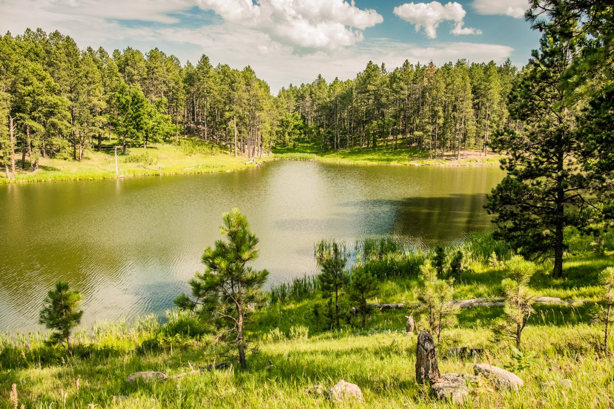 Stockade Lake przy US-16A Scenic Road, okolice Custer, Dakota Południowa, USA
